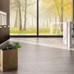 HDG Legno Popolo Porcelain Tile - Rovere Cenere 01