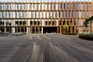 Buzon Pedestals and Ipe Hardwood Decking 10 - HDG Building Materials
