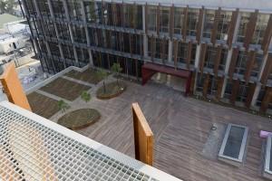 Buzon Pedestals and Ipe Hardwood Decking 11 - HDG Building Materials