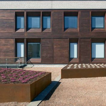 Thermally Modified Ash 1 x 6 Cladding in Hospital Facade - HDG Building Materials