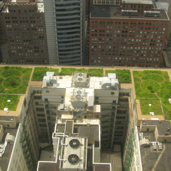 Green Roofs at Chicago City Hall - HDG Building Materials
