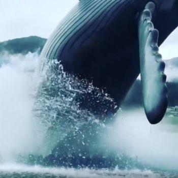 Realistic Humpback Whale Breach