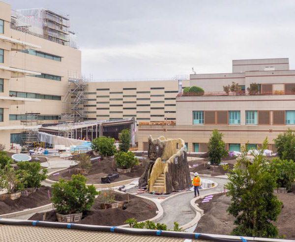 Healing Garden with Buzon Pedestals - HDG Building Materials