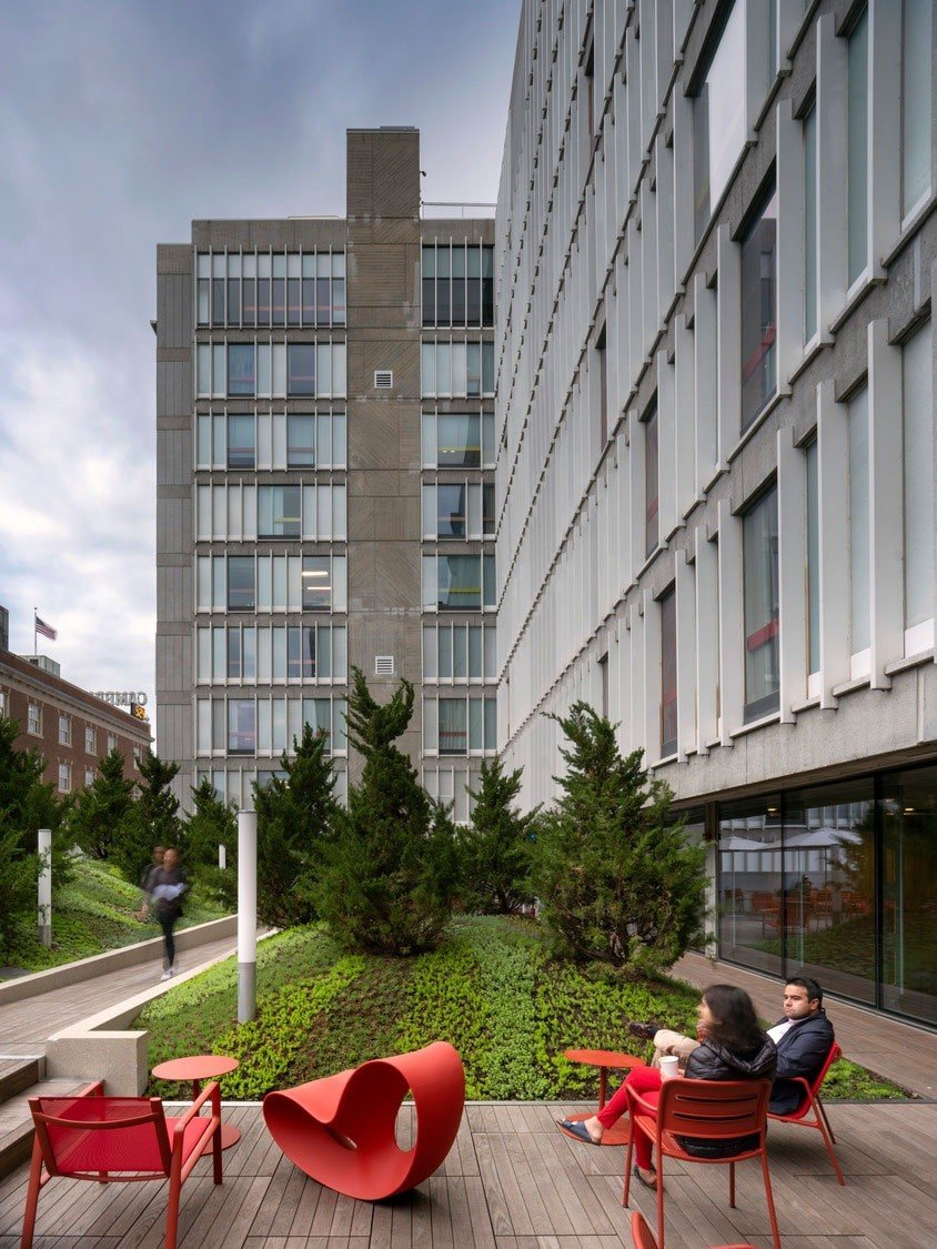 Rooftop Deck with HDG Thermory Pavers - Harvard Smith Campus Center - HDG Building Materials