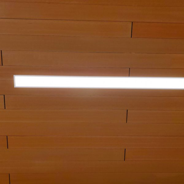Resysta Ceiling Cladding Around Flush Mount Lighting