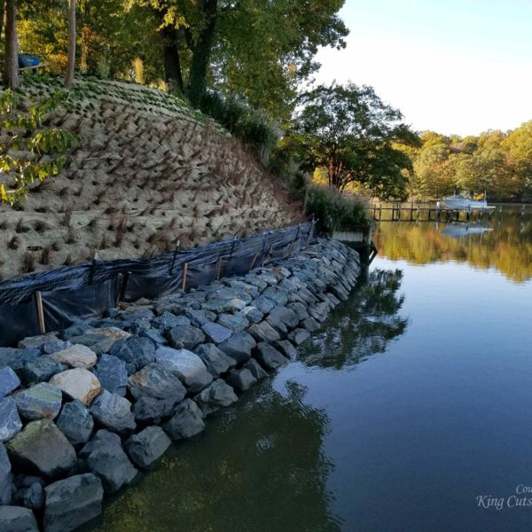 SlopeGrid Retaining Wall on Shoreline with Native Plants