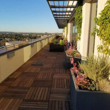 Ipe Hardwood Deck Tiles on Terrace Application